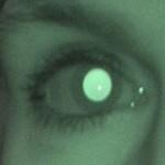 Zenias øje